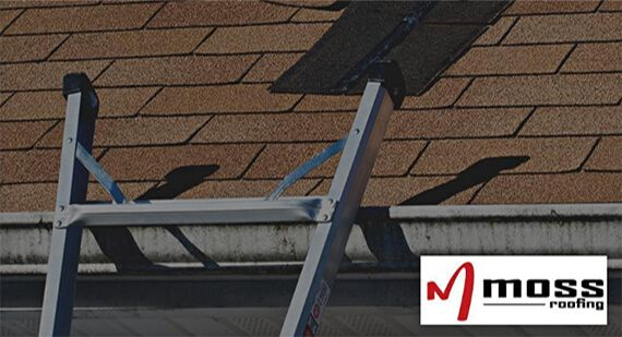 Moss Roofing Helping You With Your Remodeling Needs