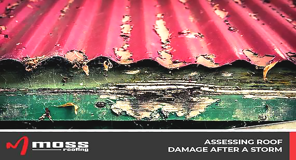 Assessing Roof Damage After a Storm