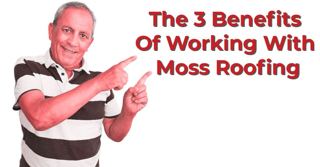 The 3 Benefits Of Working With Moss Roofing